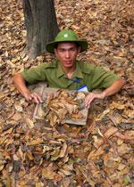 ranger feuilles mortes.