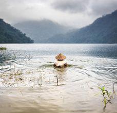 Articles et actualités au Vietnam