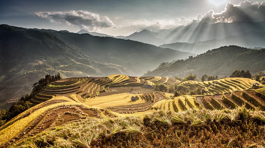 Plein de bonnes raisons de visiter le Vietnam pendant la mousson