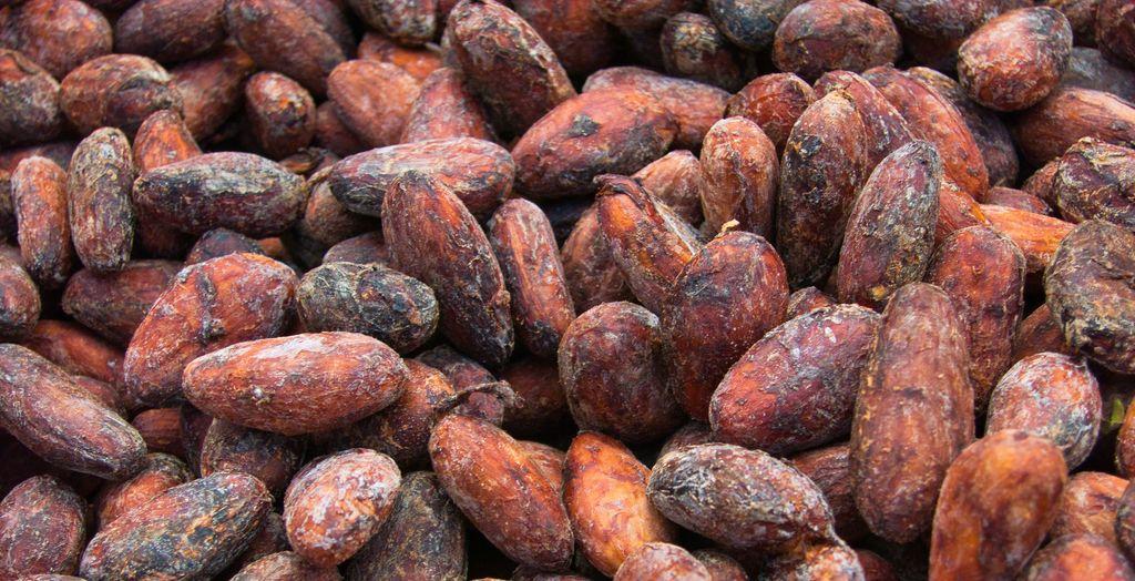 À la découverte du chocolat vietnamien