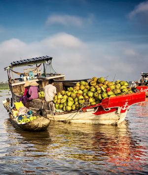 Jonque pleine de noix de coco au Vietnam.