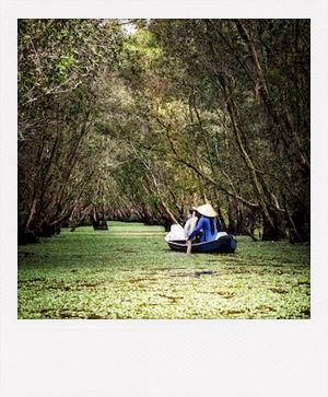 Pirogue dans un marais au Vietnam.