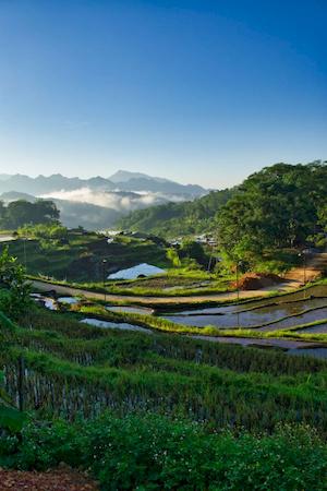 JPaysage au Vietnam.
