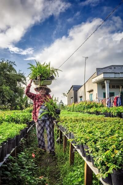 femme plantation cultivatrice.