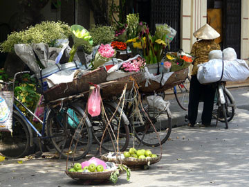 vélo fleurs.
