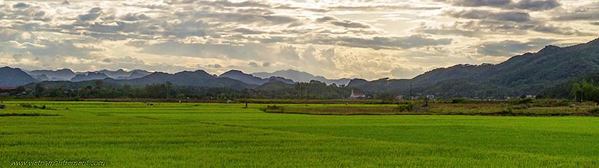 Parc national de Phong Nha au Vietnam.