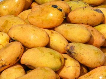 mangues jaunes sur un marché au Vietnam.