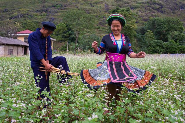 danse traditionnelle dans champs.